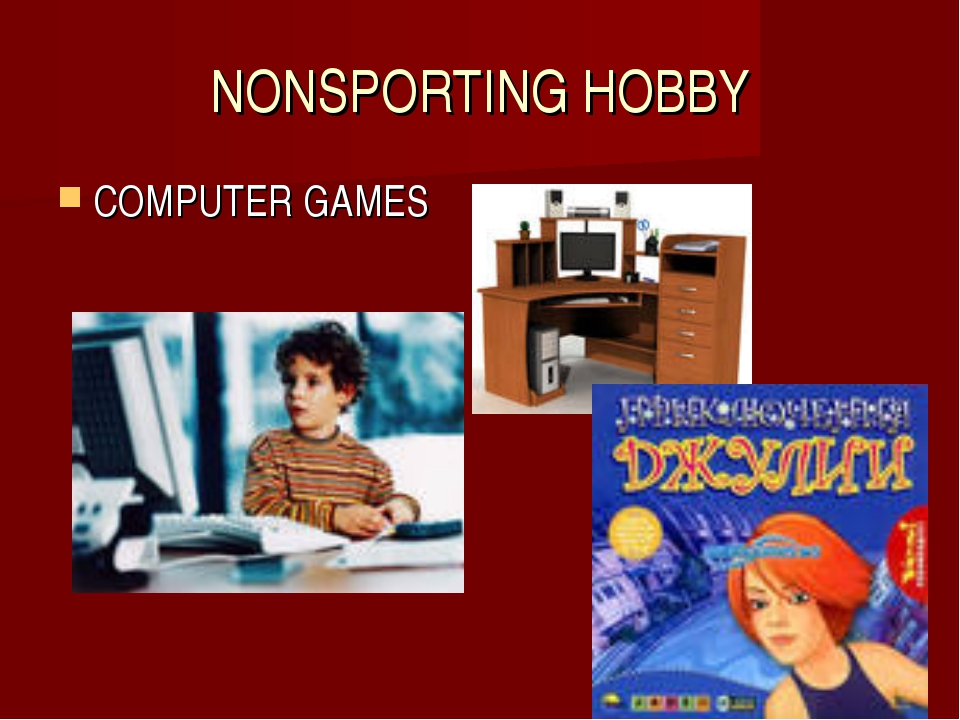 NONSPORTING HOBBY COMPUTER GAMES