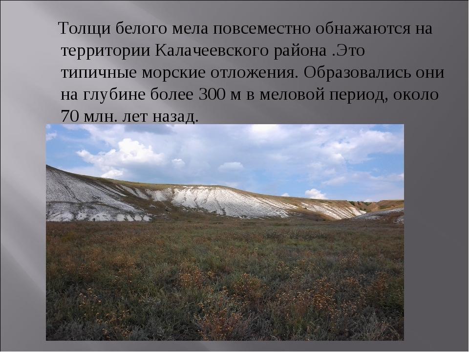 Толщи белого мела повсеместно обнажаются на территории Калачеевского района...