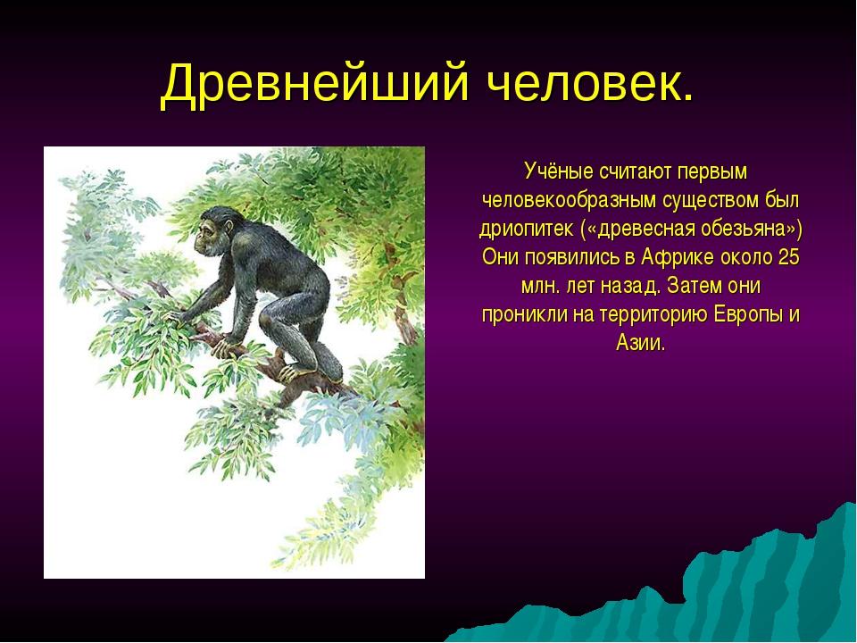Древнейший человек. Учёные считают первым человекообразным существом был дрио...