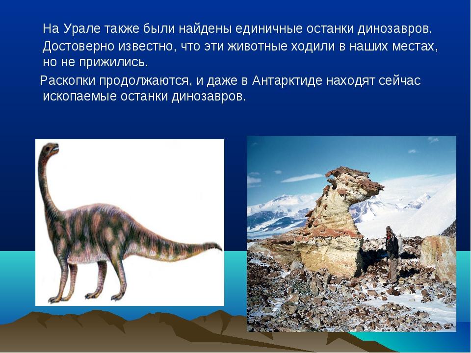 На Урале также были найдены единичные останки динозавров. Достоверно известн...