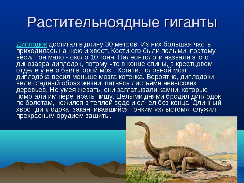 Растительноядные гиганты Диплодок достигал в длину 30 метров. Из них большая...