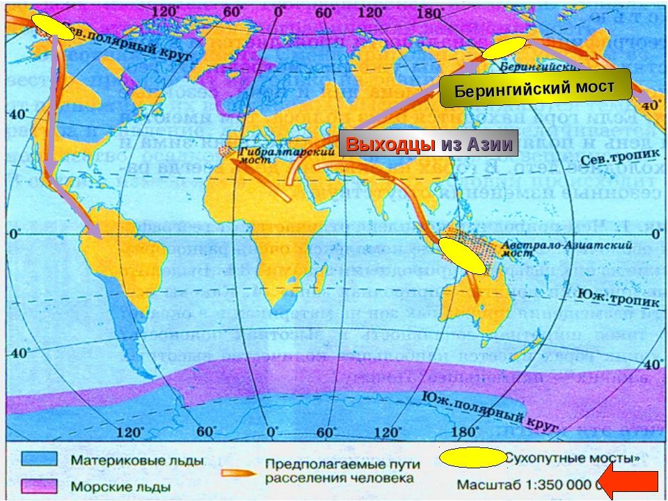 Как происходило заселение материка Южная Америка Берингийский мост Выходцы из...