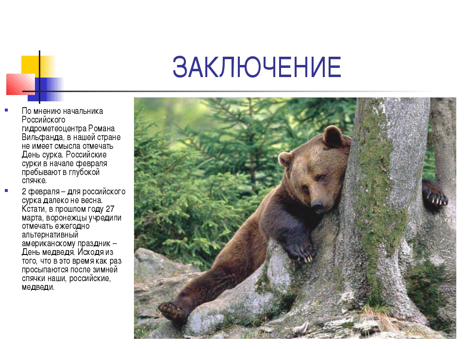 ЗАКЛЮЧЕНИЕ По мнению начальника Российского гидрометеоцентра Романа Вильфанда...