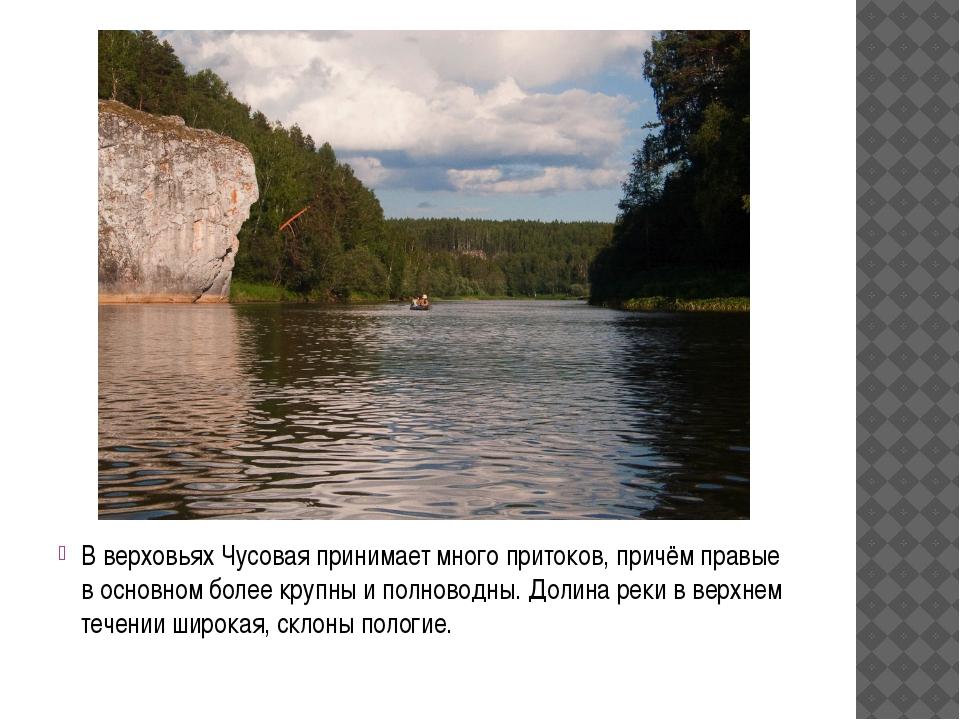 В верховьях Чусовая принимает много притоков, причём правые в основном более...