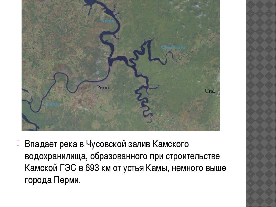 Впадает река в Чусовской залив Камского водохранилища, образованного при стро...