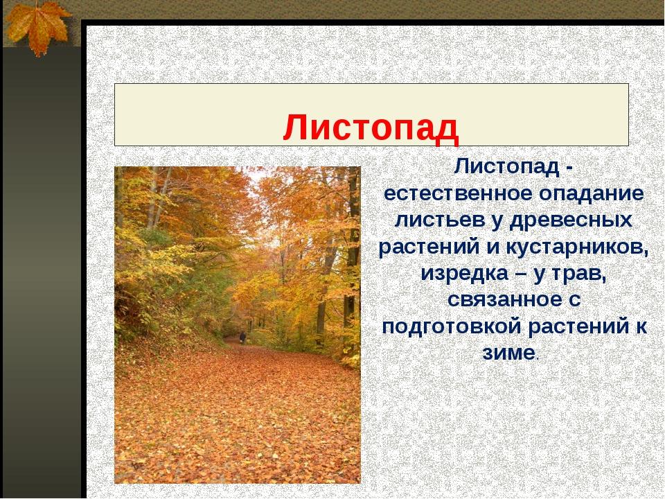 Листопад - естественное опадание листьев у древесных растений и кустарников,...