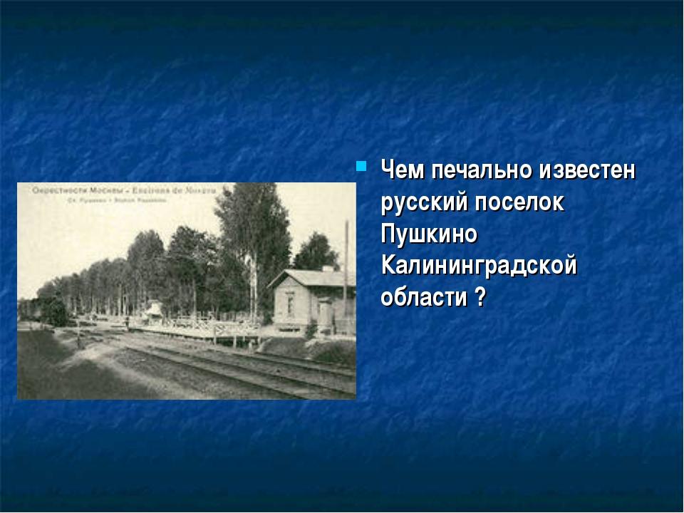 Чем печально известен русский поселок Пушкино Калининградской области ?