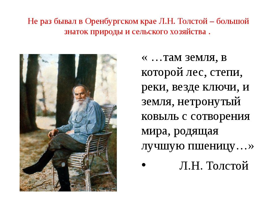 Не раз бывал в Оренбургском крае Л.Н. Толстой – большой знаток природы и сель...
