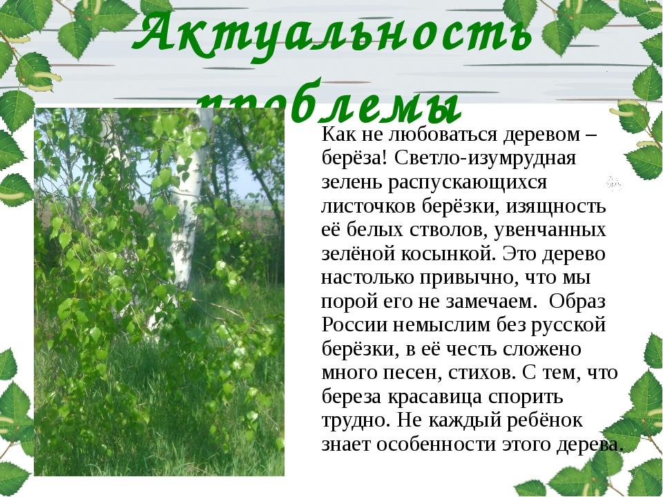 Актуальность проблемы Как не любоваться деревом – берёза! Светло-изумрудная з...