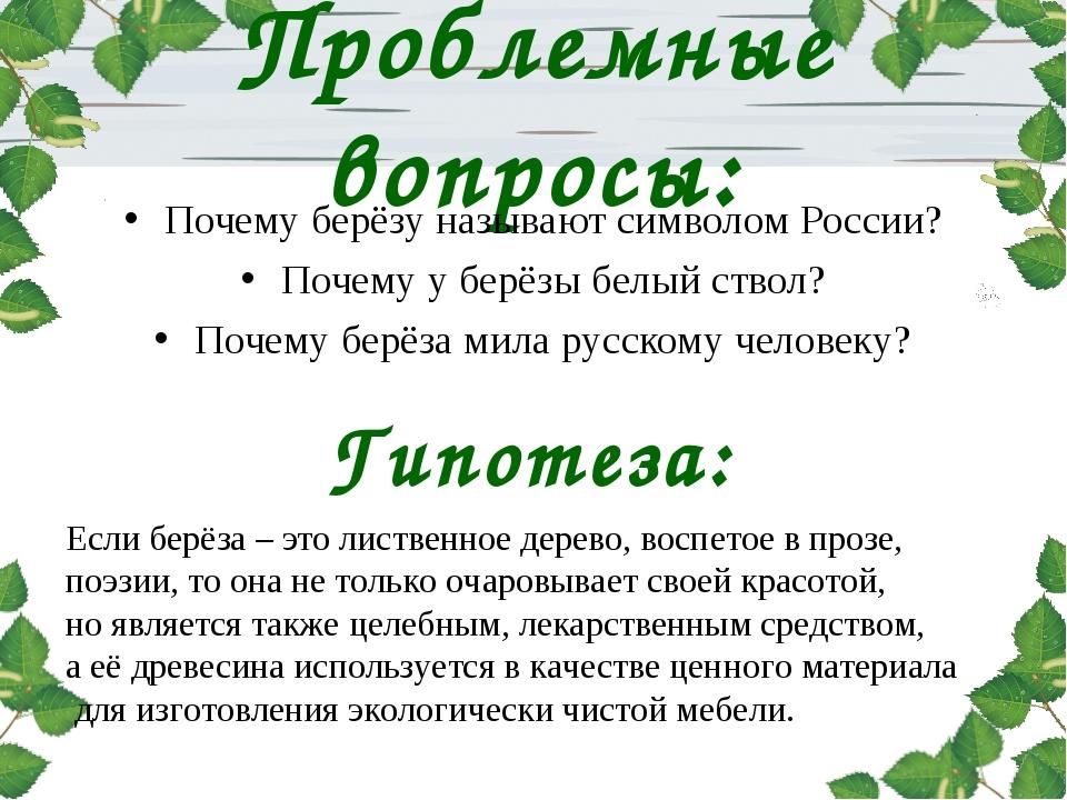 Проблемные вопросы: Почему берёзу называют символом России? Почему у берёзы б...