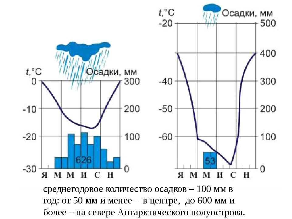 среднегодовое количество осадков – 100 мм в год: от 50 мм и менее - в центре,...