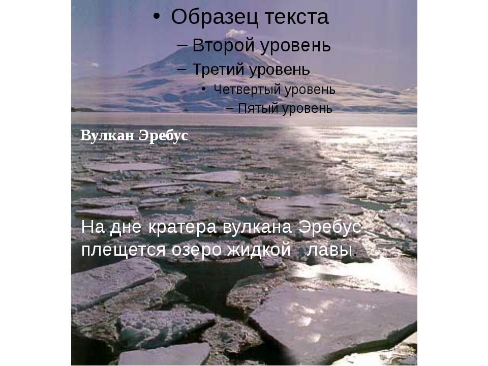Вулкан Эребус. Вулкан Эребус На дне кратера вулкана Эребус плещется озеро жид...