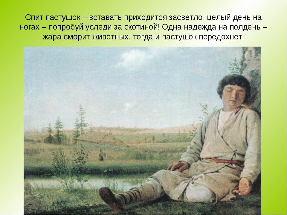 Спит пастушок – вставать приходится засветло, целый день на ногах – попробуй...