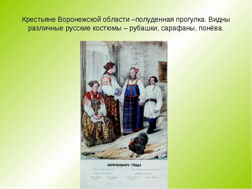 Крестьяне Воронежской области –полуденная прогулка. Видны различные русские к...