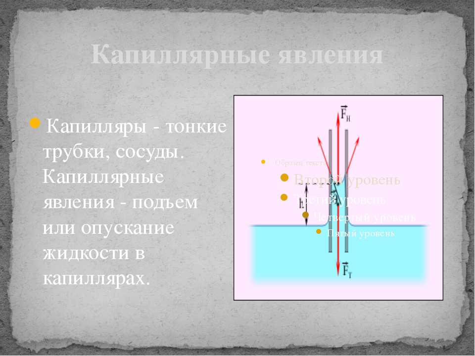 Капиллярные явления Капилляры - тонкие трубки, сосуды. Капиллярные явления -...