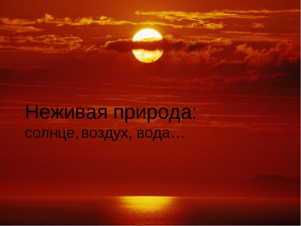 Неживая природа: солнце, воздух, вода…