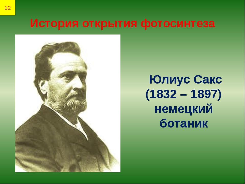 История открытия фотосинтеза Юлиус Сакс (1832 – 1897) немецкий ботаник 12