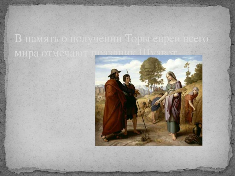 В память о получении Торы евреи всего мира отмечают праздник Шуавот