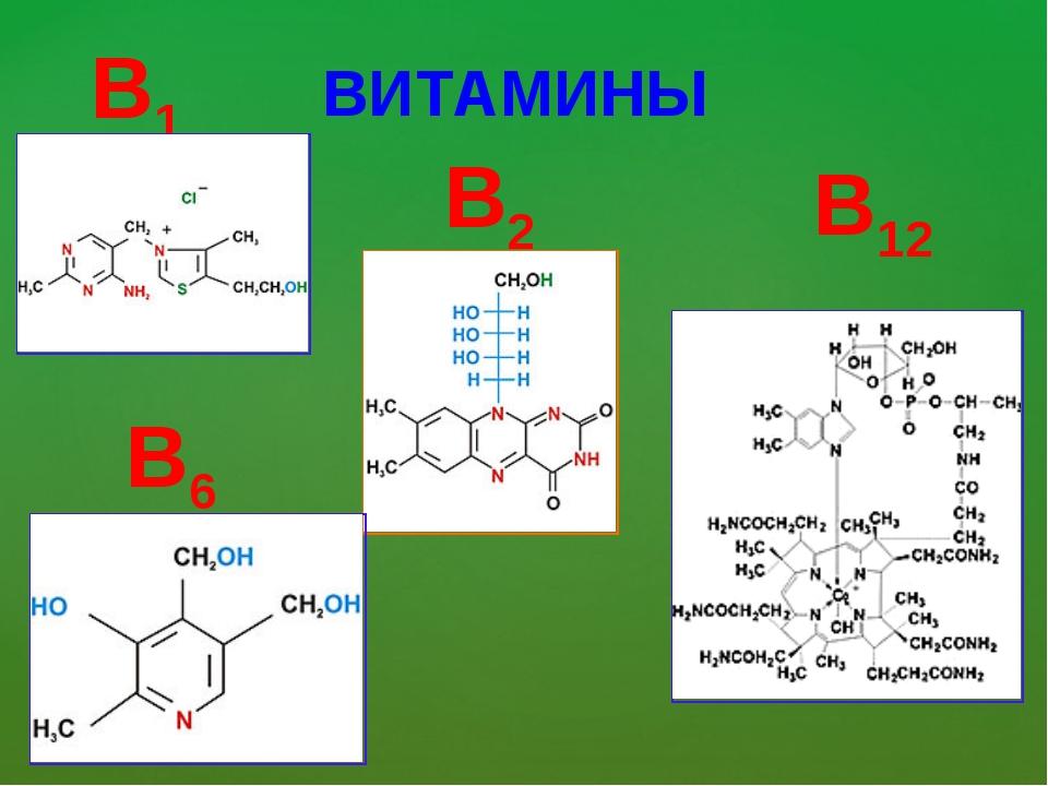 ВИТАМИНЫ B1 B2 B6 B12