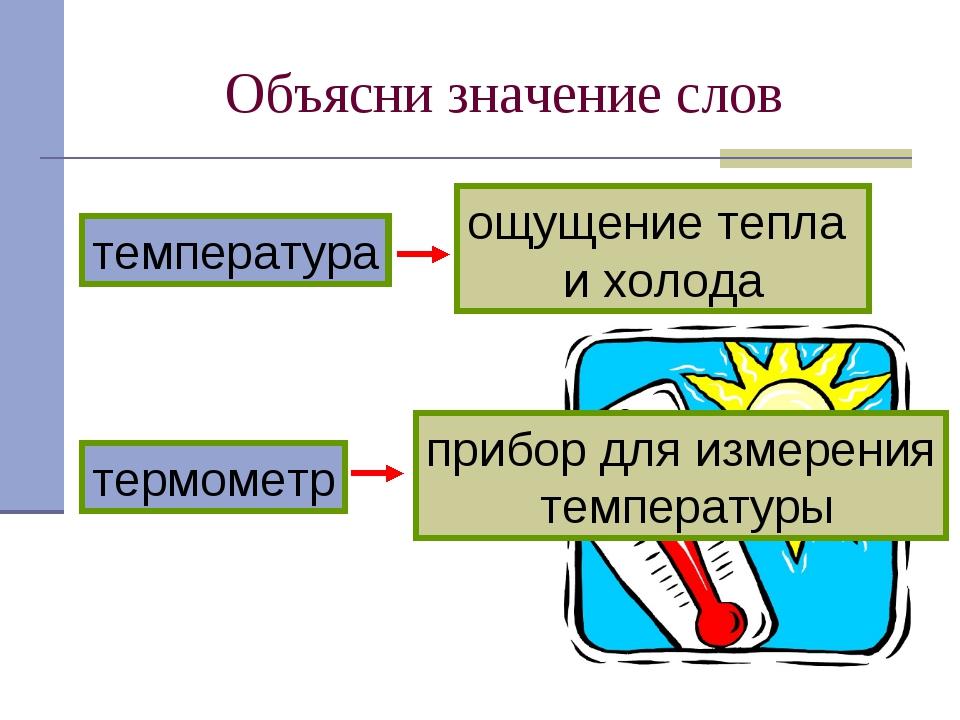 Объясни значение слов термометр температура прибор для измерения температуры...