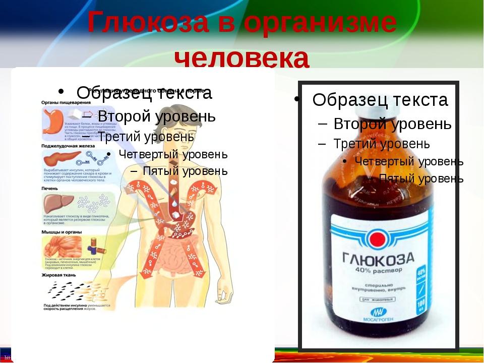 Глюкоза в организме человека http://linda6035.ucoz.ru/