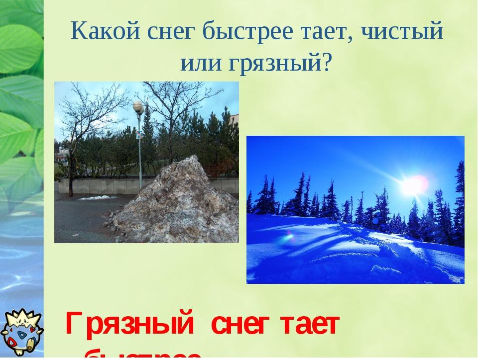 Какой снег быстрее тает, чистый или грязный? Грязный снег тает быстрее.