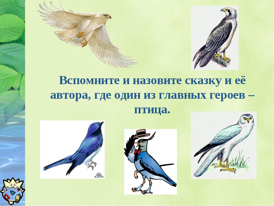 Вспомните и назовите сказку и её автора, где один из главных героев – птица.