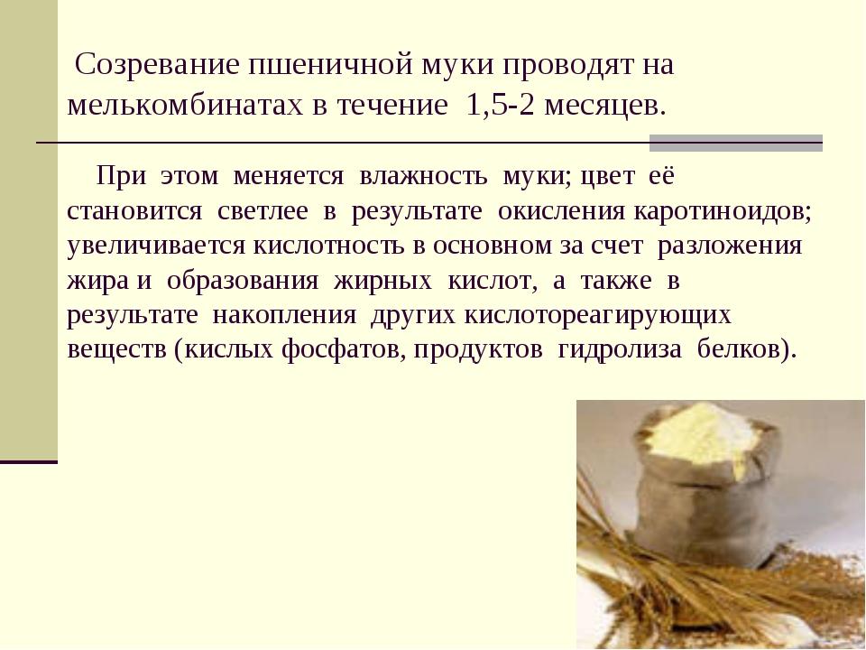 Созревание пшеничной муки проводят на мелькомбинатах в течение 1,5-2 месяцев...