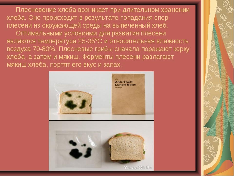 Плесневение хлеба возникает при длительном хранении хлеба. Оно происходит в...