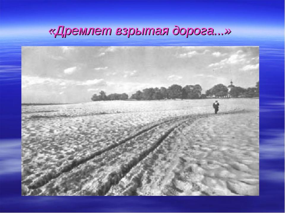 «Дремлет взрытая дорога...»
