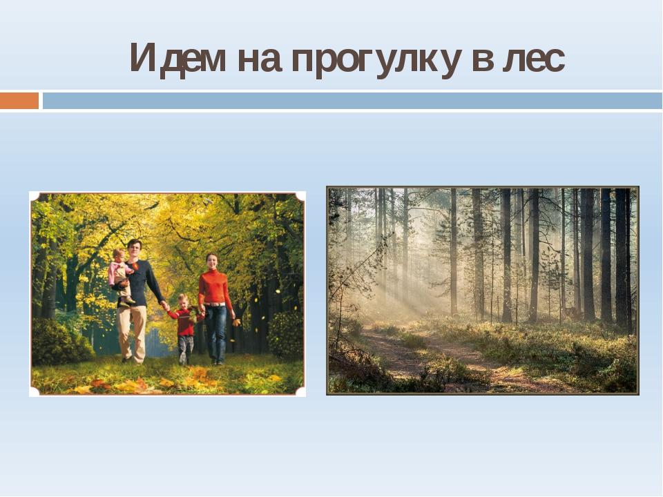 Идем на прогулку в лес