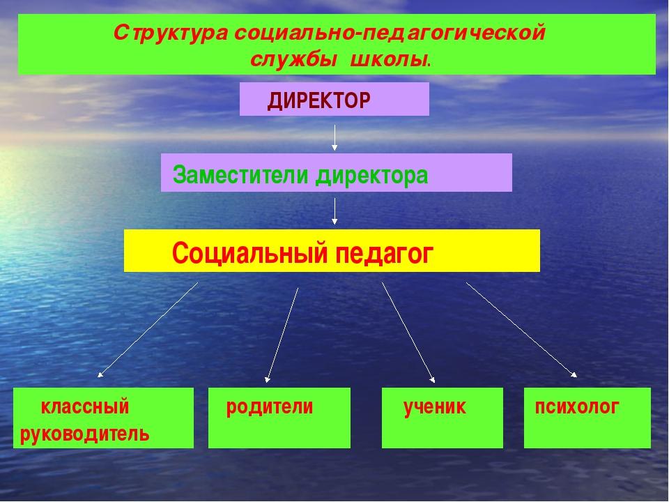 Структура социально-педагогической службы школы. ДИРЕКТОР Заместители директ...
