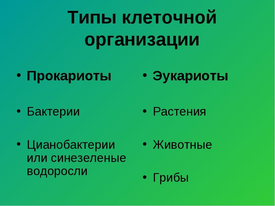 Типы клеточной организации Прокариоты Бактерии Цианобактерии или синезеленые...