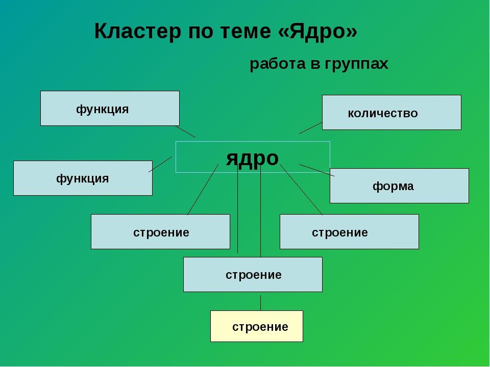 Кластер по теме «Ядро» работа в группах ядро функция количество форма функци...