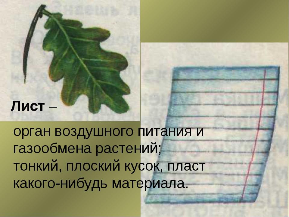 Лист – орган воздушного питания и газообмена растений; тонкий, плоский кусок,...