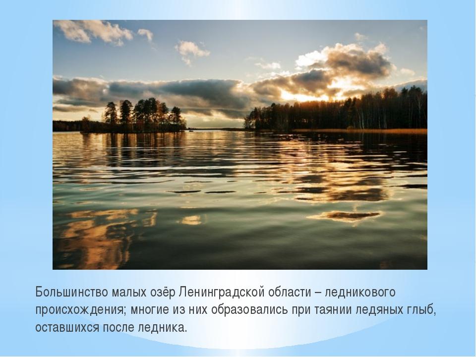 Большинство малых озёр Ленинградской области – ледникового происхождения; мно...