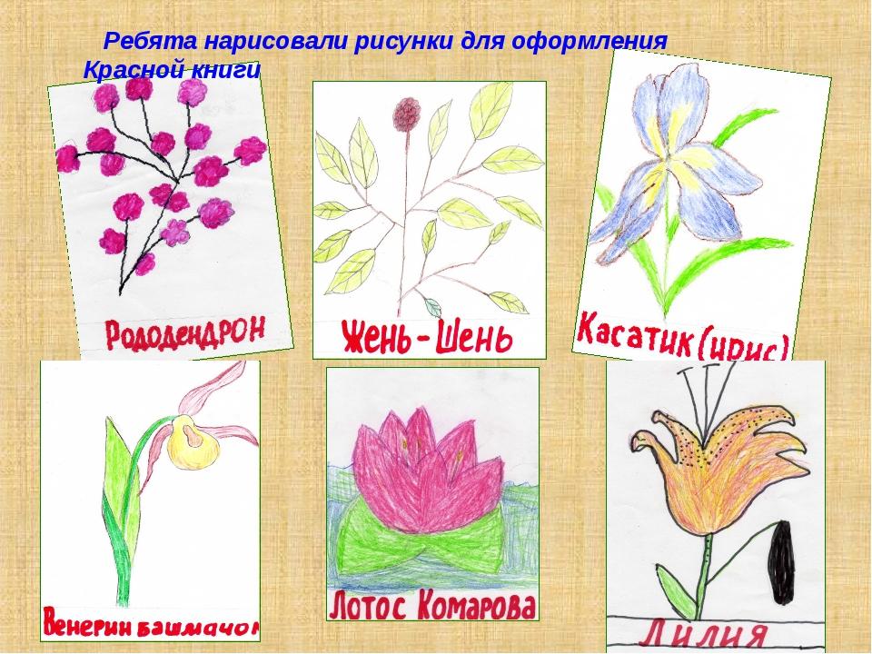 Ребята нарисовали рисунки для оформления Красной книги