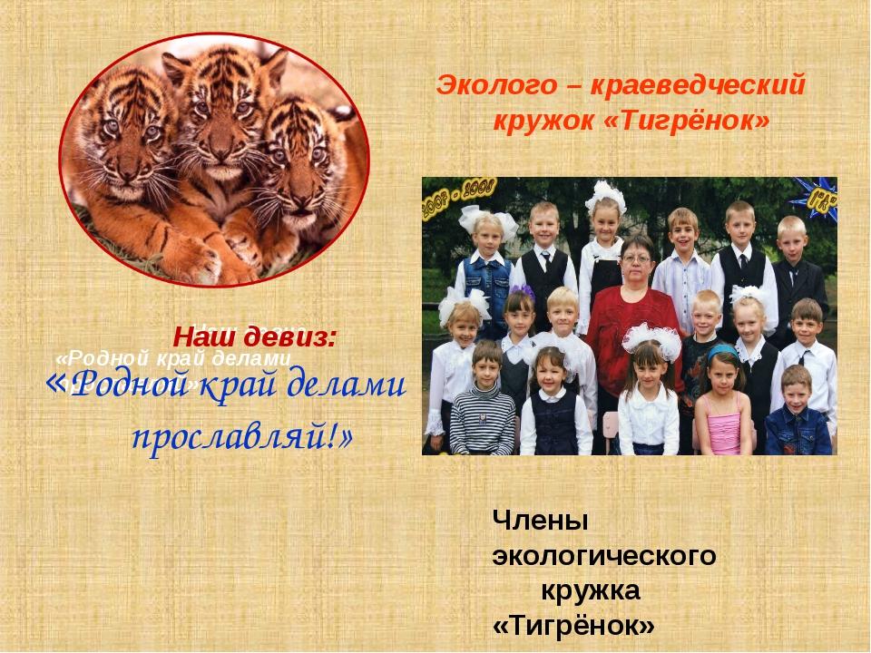 Эколого – краеведческий кружок «Тигрёнок» Наш девиз «Родной край делами прос...