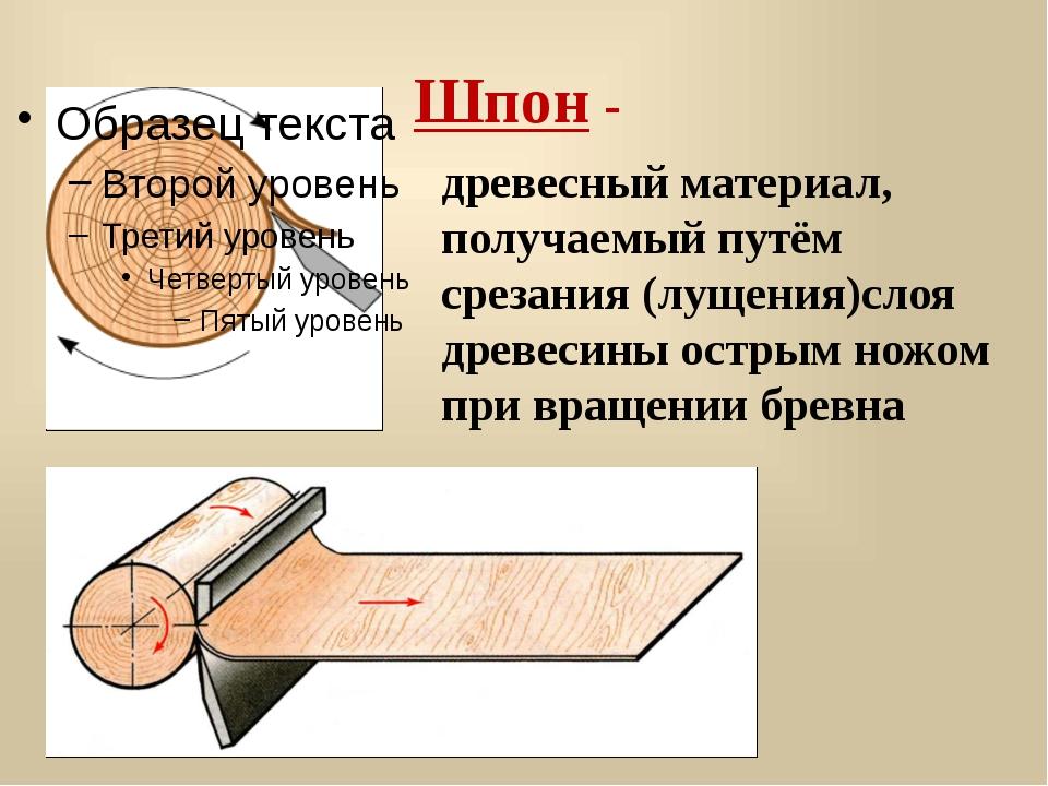 Шпон - древесный материал, получаемый путём срезания (лущения)слоя древесины...