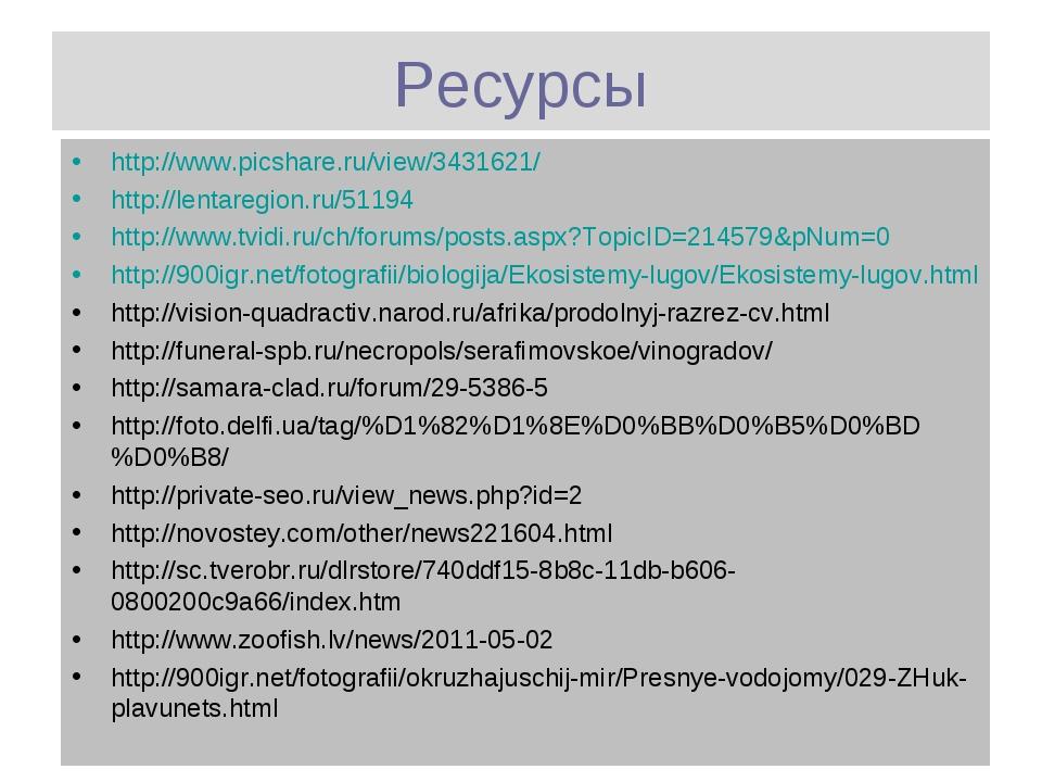 Ресурсы http://www.picshare.ru/view/3431621/ http://lentaregion.ru/51194 http...