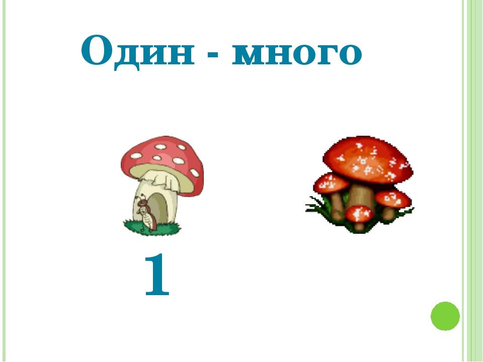 Один - много 1