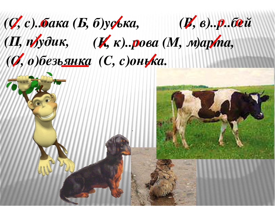 (С, с)..бака (Б, б)уська, (В, в)..р..бей (П, п)удик, (К, к)..рова (М, м)арта,...
