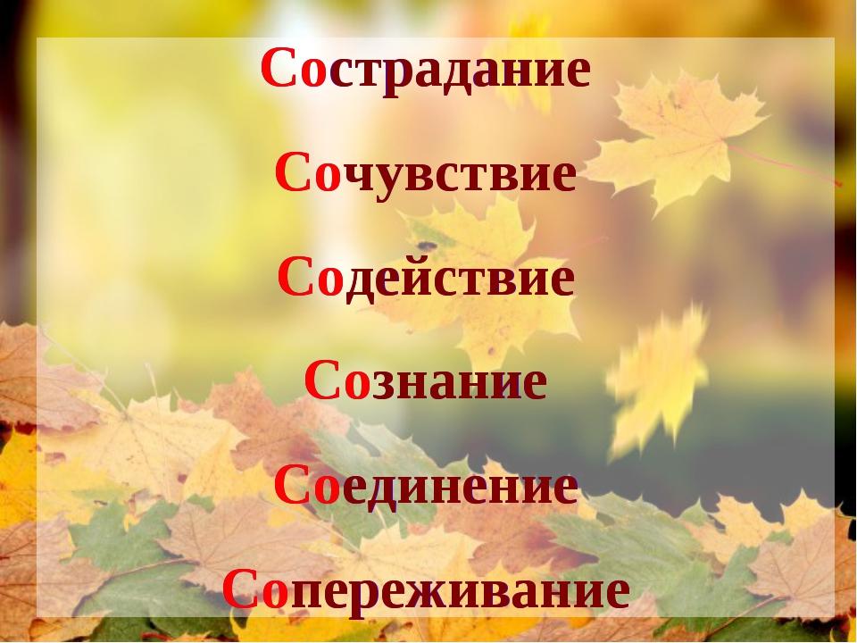 Сострадание Сочувствие Содействие Сознание Соединение Сопереживание Сострадан...