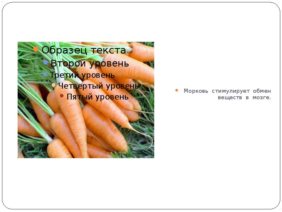 Морковь стимулирует обмен веществ в мозге.