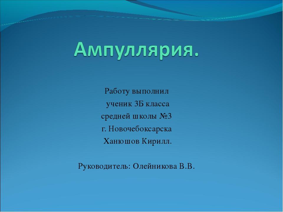 Работу выполнил ученик 3Б класса средней школы №3 г. Новочебоксарска Ханюшов...