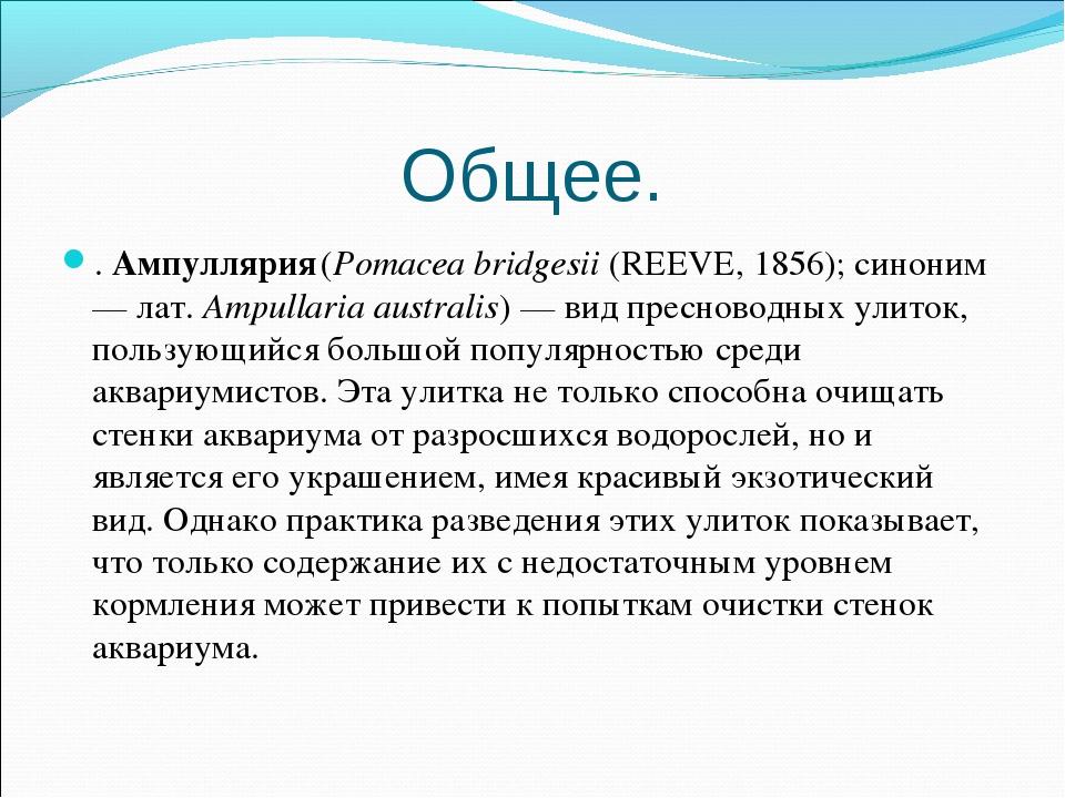 Общее. . Ампуллярия (Pomacea bridgesii (REEVE, 1856); синоним — лат.Ampullar...