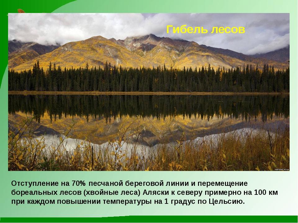 Гибель лесов Отступление на 70% песчаной береговой линии и перемещение бореал...