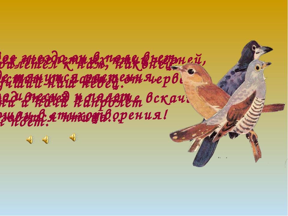 Всех перелетных птиц черней, Чистит он пашню от червей. Взад-вперед по пашне...
