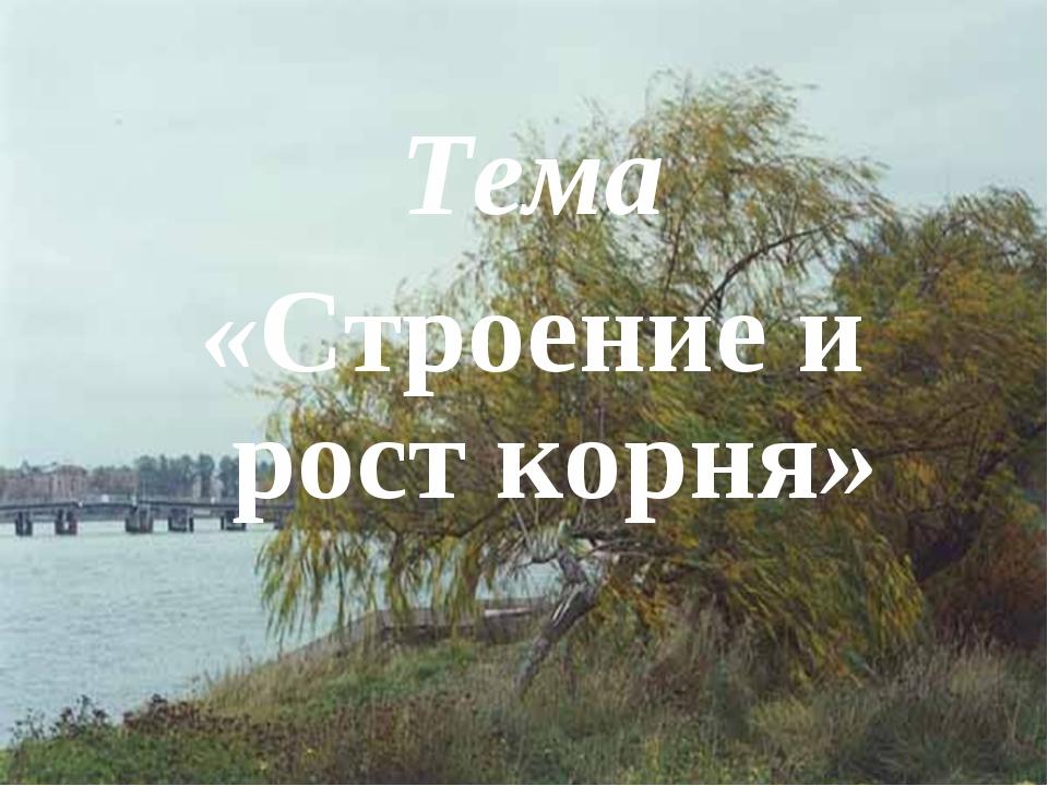 Тема «Строение и рост корня»