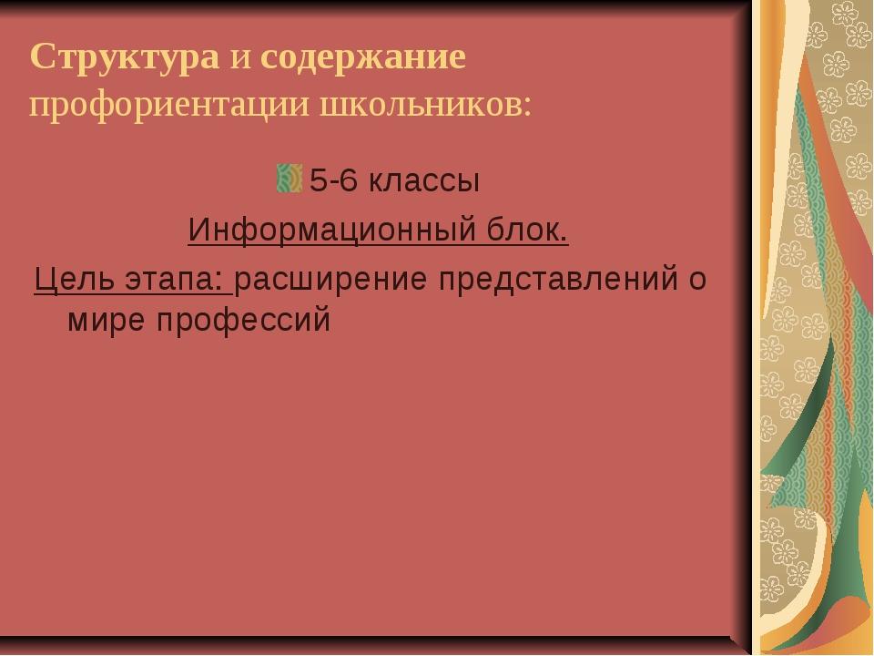 Структура и содержание профориентации школьников: 5-6 классы Информационный б...